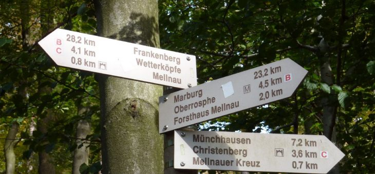 Startzeiten der Wandertouren am BurgWaldTag (25.05.2017)